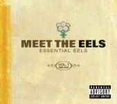 I Need Some Sleep - Eels