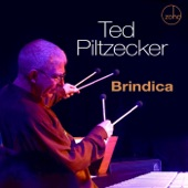 Ted Piltzecker - Look at It Like This