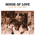 THE HOUSE OF LOVE - Burn Down the World (Peel Session)