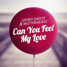 leeroy daevis muttonheadsの can you feel my love radio edit