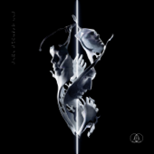 Enter Formless (feat. Rituals of Mine) - The Glitch Mob