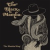 The Mamba King