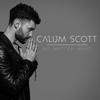 No Matter What - Calum Scott