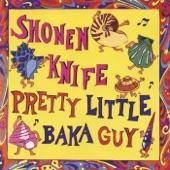 Shonen Knife - Summertime Boogie