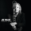 Joe Walsh - One Day At a Time artwork