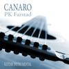 PK Farstad - Canaro artwork