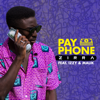 Zirra - Payphone (feat. Izzy & Malik) artwork