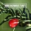 Enormous Tunes - Yearbook 2017