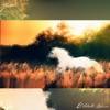 El Caballo Blanco - Single