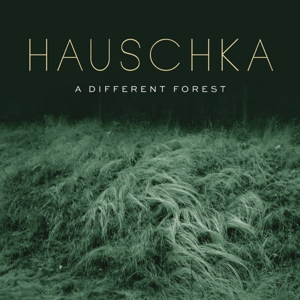 Hauschka - A Different Forest album wiki, reviews