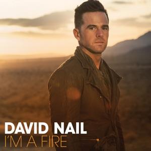 David Nail - The Secret - Line Dance Music
