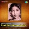 Peddha Manushulu Original Motion Picture Soundtrack Single