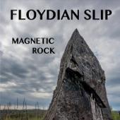 Floydian Slip - Skeletons in the Desert