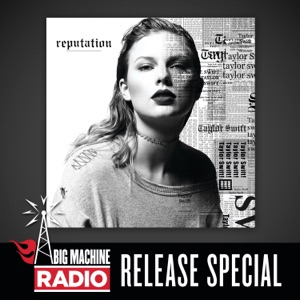 reputation (Big Machine Radio Release Special) Mp3 Download