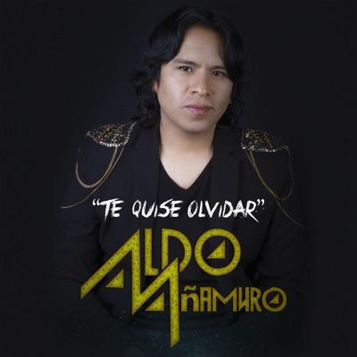 Te Quise Olvidar - Single - Aldo Añamuro