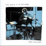 Dina Maccabee - Someone Fearless