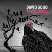 Don't Bother Me David Gogo