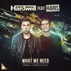 What We Need (feat. Haris) - Single