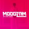 Ivri Lider - Moogzam artwork