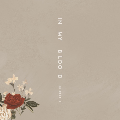 Shawn Mendes - In My Blood (Acoustic) - Single