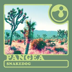 Snakedog - Single