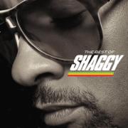 The Best of Shaggy - Shaggy - Shaggy