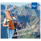 15 Nebelhorn-Gipfelmeer-Blick