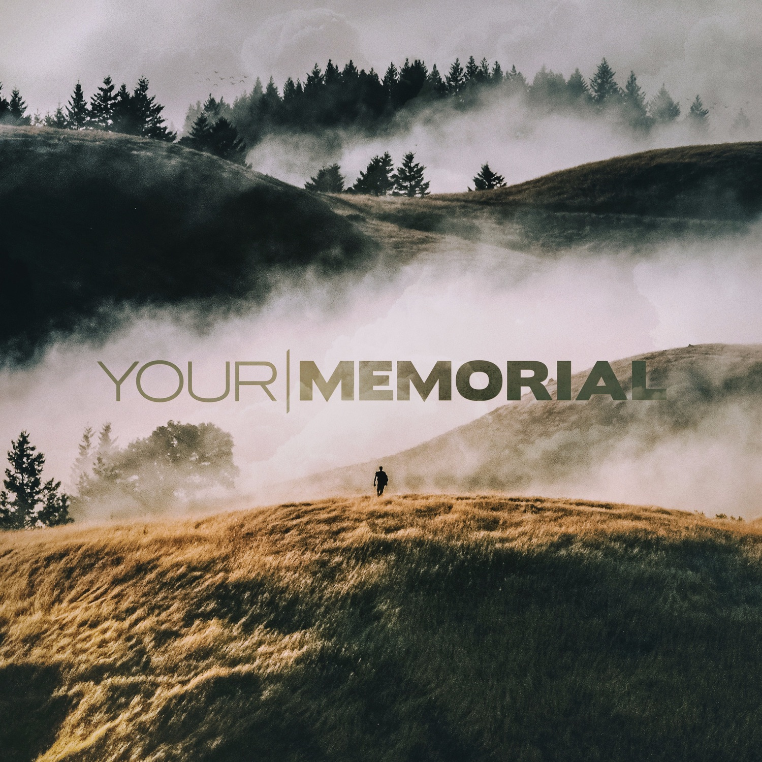 Your Memorial - Degenerate [single] (2017)