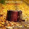 Super Vallenatos Románticos, Vol. 1