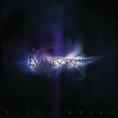 Evanescence - The Other Side