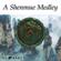 A Shenmue Medley: Sedge Tree / Shenhua (feat. Annie Mai) - KayThePianist