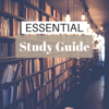 Essential Study Guide - Rain and Water Sounds Effects for Healthy Brain Training - Soft Study Background