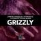 Grizzly - Dimitri Vangelis & Wyman & Futuristic Polar Bears lyrics