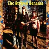 The Striped Bananas - Mind Desert