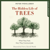 Peter Wohlleben - The Hidden Life of Trees  artwork