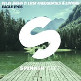 Eagle Eyes (feat. Lost Frequencies & Linying) - Single