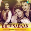 Dil-E-Nadaan (Original Motion Picture Soundtrack) - EP