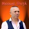 Mi-E Drag De Tine - Single, Nicolae Guta