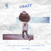 Lost Frequencies & Zonderling - Crazy kunstwerk