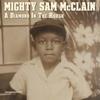 A Diamond in the Rough - Mighty Sam McClain