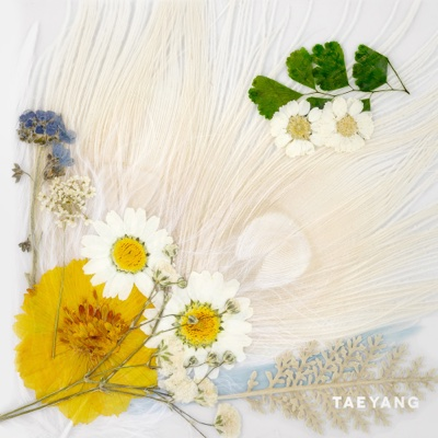 WHITE NIGHT - TAEYANG album