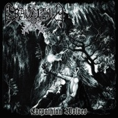 Graveland - In the Northern Carpathians