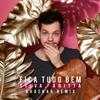 Bhaskar - Fica Tudo Bem (feat. Anitta) [Bhaskar Remix]  arte