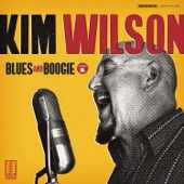 Kim Wilson - You Upset My Mind