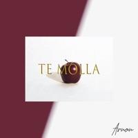 Te Molla (Dj Killjoy rmx) - ARNON / KILLUA