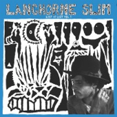 Langhorne Slim - Life Is Confusing
