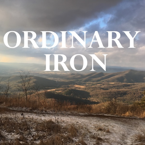 ORDINARY IRON