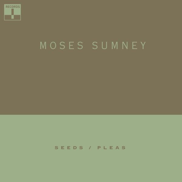 Seeds / Pleas - Single
