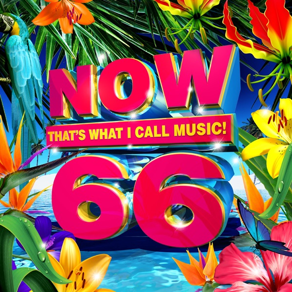 NOW That's What I Call Music, Vol. 66 album image