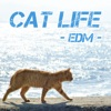 Cat life (EDM Ver.) - Single ジャケット画像